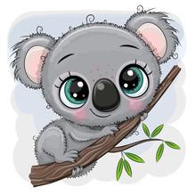Cartoon Koala Is Sitting On A Tree