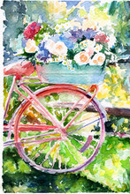 Bike With Flowers. Roses Hydrangea. Vintage.  Sunny. Spring Summer . Watercolor