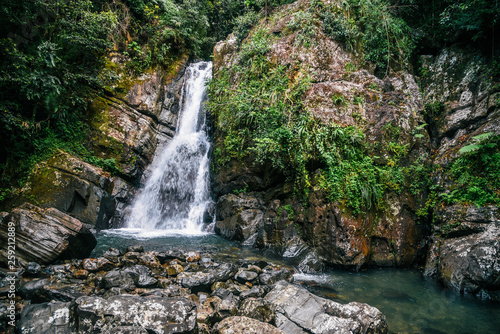 Fototapeta La Mina Falls in El Yunque National Forest in Puerto Rico