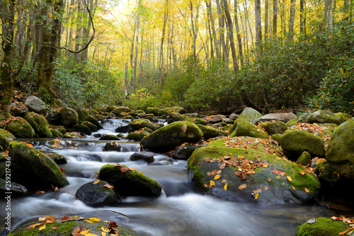 Photo Stands Forest river Small white water stream in the Smoky Mountains fall.