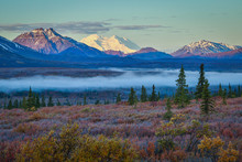 Foggy Morning In Denali Nation...