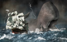A Giant Sperm Whale Chases A S...