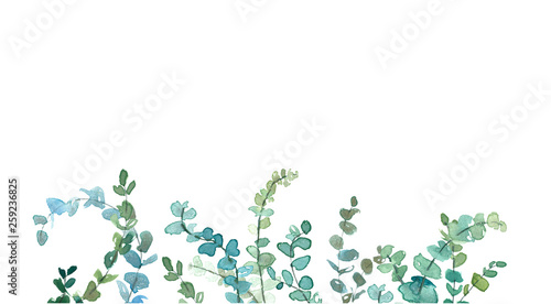 Watercolor eucalyptus minimalistic drawing. Hand painted plants, branches, leaves on white background. Greenery wedding invitation. Natural card design. Isolated on white background.