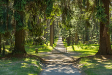 The Forest Cemetery In Stockholm Is A Large Burial Ground With Forests, Meadows And Groves