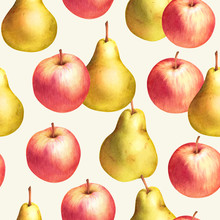Red Apples And Yellow Pears Hand Drawn Seamless Pattern. Colorful Watercolor Fruit Background.