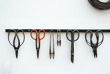 Gardener Scissors
