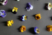 Arrangement Of Edible Flowers ...