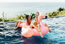 Friends Are In The Swimming Pool With Flamingo And Donut