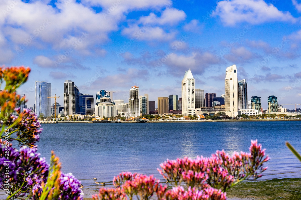 Fototapety, obrazy: Panoramic view of the downtown San Diego skyline taken from Coronado Island, California