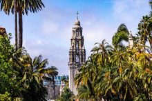 The California Tower Surrounded By Palm Trees, San Diego, California