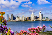 Panoramic View Of The Downtown...