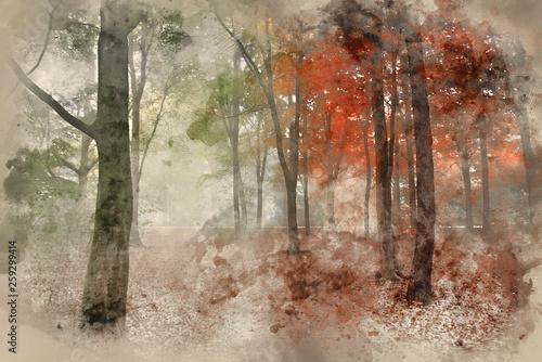 akwarela-malarstwo-por-roku