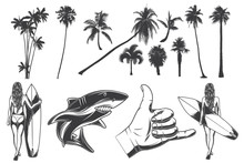 Set With Hand Drawn Illustrations Of Girl With Surfing Board, Shark And Hand With Surfing Gesture. Set Of Palms Silhouettes. Isolated On White Background.