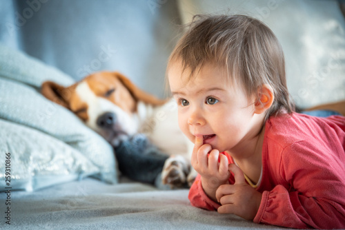 Fotografie, Obraz  Baby with dog on sofa relaxing together.