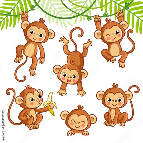 Photo Vector set with monkey in different poses.