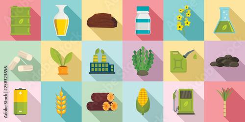 Bio fuel icons set Canvas Print