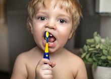 The Boy Cleans A Teeth