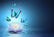 Leinwandbild Motiv Butterflies And Waterlily In Water - Beauty Miracle