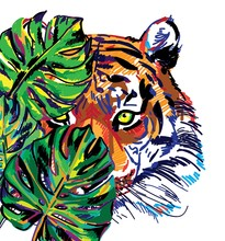 Tiger In The Jungle. Large Leaves Of Tropical Plants. Multicolored Drawing.