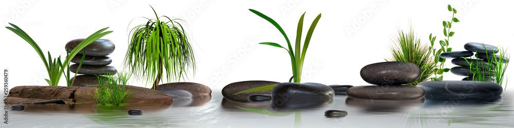 Fototapety, obrazy: Wandbild mit Gräser, Schmucksteine und Wasser