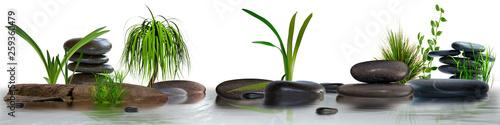 Fototapeta Wandbild mit Gräser, Schmucksteine und Wasser obraz