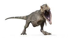 T-Rex Dinosaur, Tyrannosaurus Rex Reptile, Prehistoric Jurassic Animal Roaring On White Background, Front View, 3D Illustration