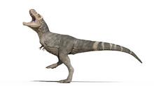 T-Rex Dinosaur, Tyrannosaurus ...