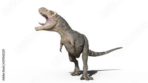 Photo  T-Rex Dinosaur, Tyrannosaurus Rex reptile roars, prehistoric Jurassic animal iso