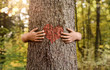 Leinwandbild Motiv Nature lover, close up of child hands hugging tree with copy space