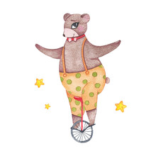 Watercolor Circus Animal Cute Bear Riding Unicycle Isolated On White Background