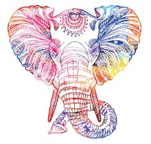 The Head Of An Elephant. Meditation, Coloring Of The Mandala. Large Horns And Long Trunk. Elephant With Tusks. Drawing Manually, Templates. Strips, Points, Arrows. Spots Of Watercolor Paint, Spray.