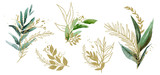 Fototapeta Kwiaty - Watercolor floral illustration set - green & gold leaf branches, for wedding stationary, greetings, wallpapers, fashion, background. Eucalyptus, olive, green leaves, etc.