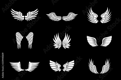 120f8fb49 Wings Sketch Set Isolated On Black Background. Collection Of Hand Drawn Angel  Wings. Abstract