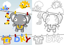 Drying Time With Funny Elephan...