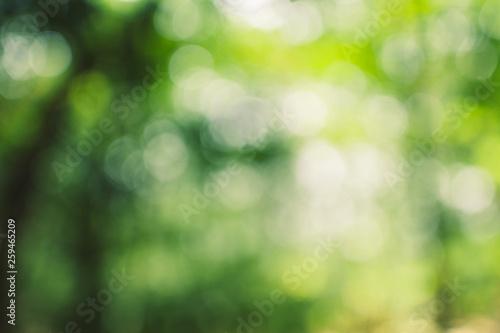 Foto op Plexiglas Groene Abstract green bokeh background in the jungle