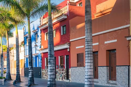 In de dag Zuid-Amerika land Colourful houses, palm on street Puerto de la Cruz town Tenerife Canary Islands