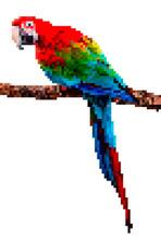 Bird Pixel Art. Parrot Pixel Illustration Isolated On White Background.