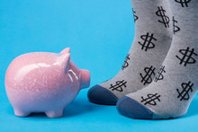 Pink Piggy Bank Looks On Two Legs With Socks With A Pattern In The Shape Of A Dollar Symbol, Concept Of Finance And Lending