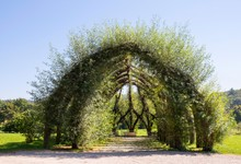 Weidenkirche, Living Willow Structure, Church, Pappenheim, Altmuhltal, Middle Franconia, Franconia, Bavaria, Germany, Europe
