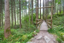 Wooden Bridge In Forest, Sand ...