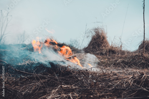 The grass is burning, the fire of which destroys everything in its path Fotobehang