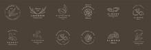 Argan, Aloe, Peanut, Almond, Eucalyptus, Tea, Chamomile And Pistachio. Vector Set  Packaging Design Templates And Emblems. Logos In Trendy Linear Style