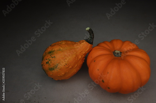 orange pumpkin in mysterious shadow.