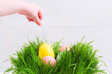 A Child Take Pastel Egg From Grass By Rope. Copy Space