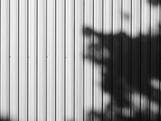 shadow leaf on corrugated metal street wall black and white style