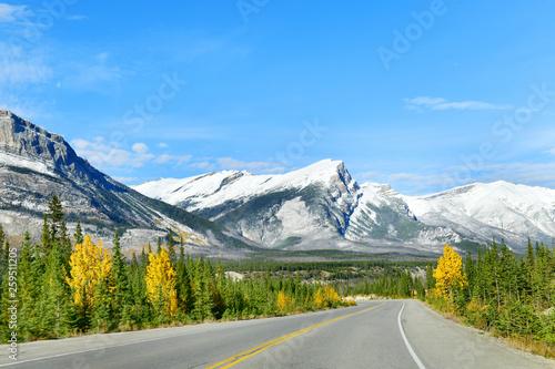 Fototapeta  The road 93 beautiful Icefield Parkway in Autumn Jasper National park,Canada