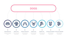 Simple Illustration Set Of 7 Vector Blue Icons Such As Anatolian Shepherd Dog Dog, Austrailian Shepard Dog, Barbet _icon4, Basset Hound Beagle Beauceron Infographic Design With 7 Icons Pack