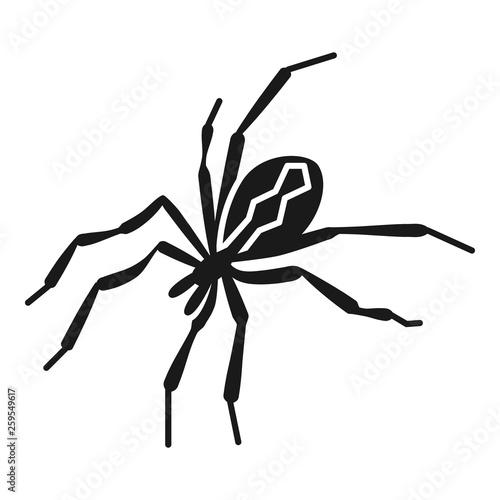 Photo Horror spider icon
