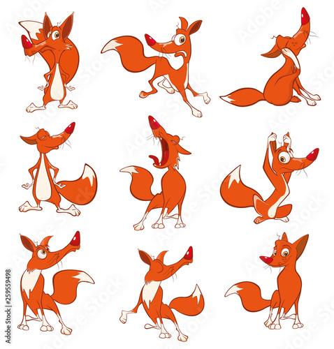 Foto auf AluDibond Babyzimmer Vector Illustration of a Set Funny Foxes. Cartoon Cartoon Character