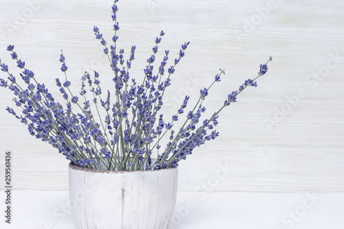 Wall Murals Lily of the valley Bouquet of dry lavender in ceramic pot with white wooden wall. Copy space for text.